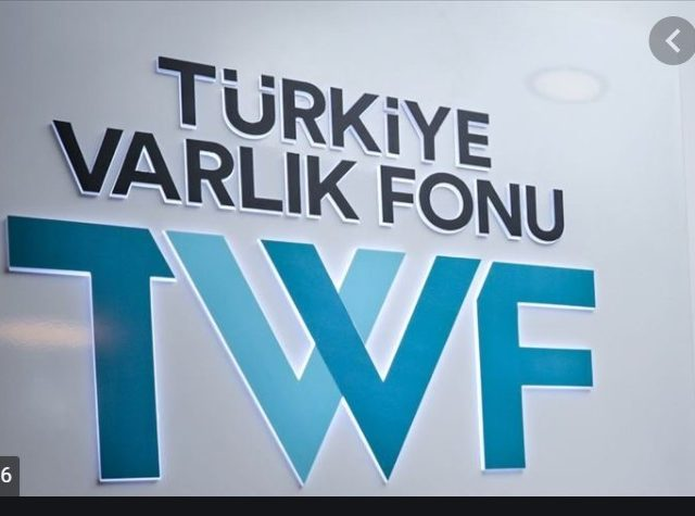 Turkey Wealth Fund profit fell 48.3 percent in 2019
